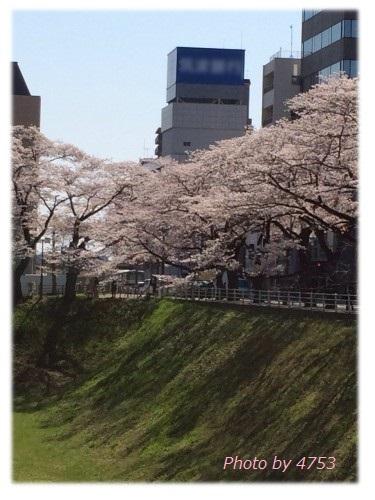 sannomaru3.JPG